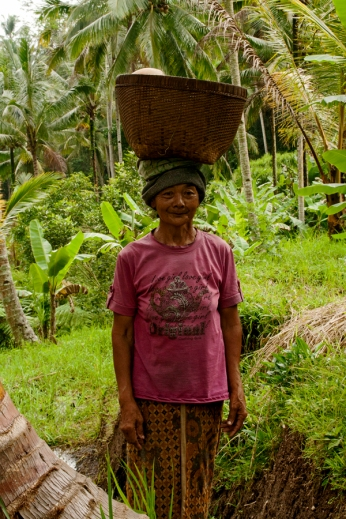 Lady, Ubud rice terraces, Bali. Copyright Lucy Munday